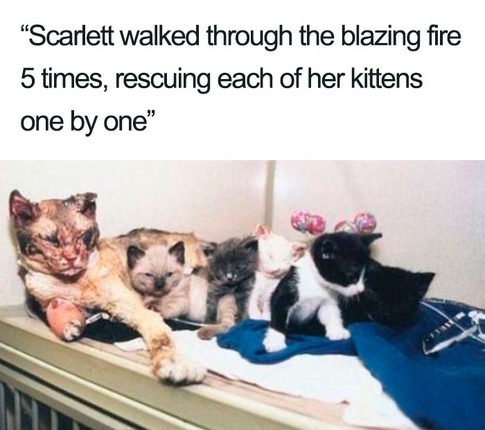 10. Scarlett and a mother's love.