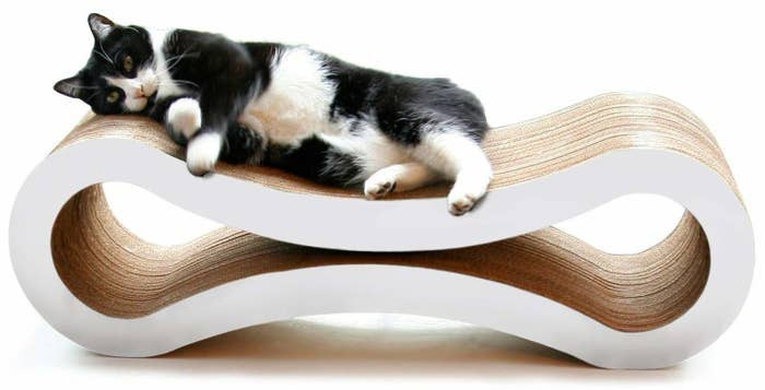 14. Cat Scratcher Lounge