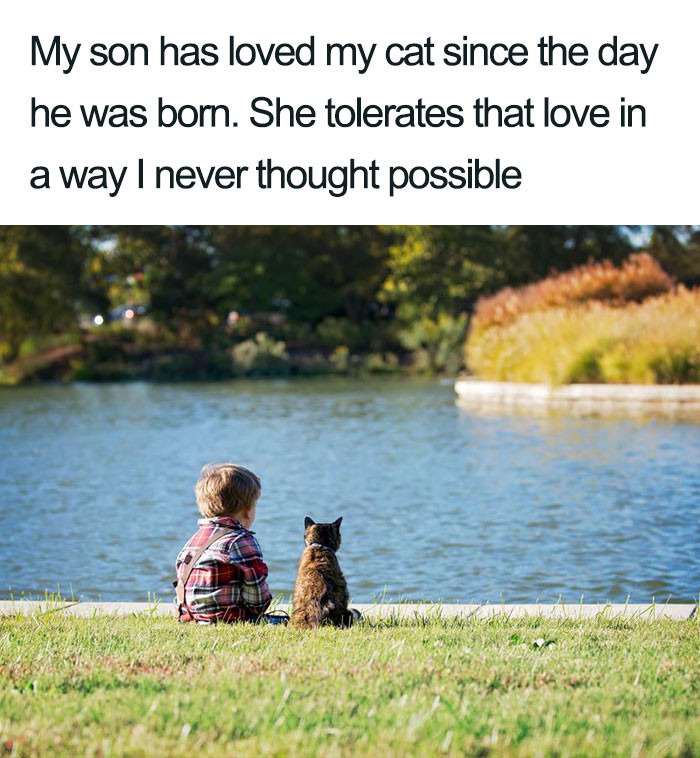 13. Whoever said dog's were a kid's best friend never saw a cat and a kid.