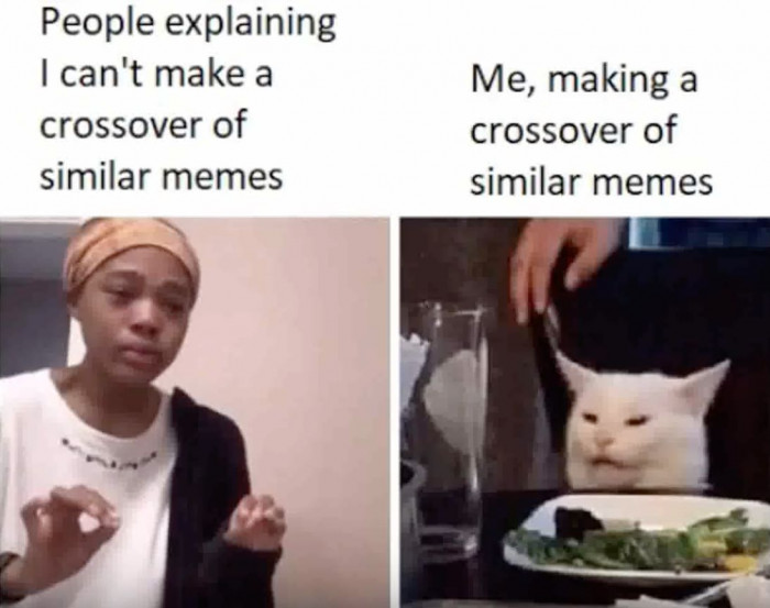 These Are The Best Woman Yelling At A Cat Memes We Ve Ever Seen Cats On Catnip