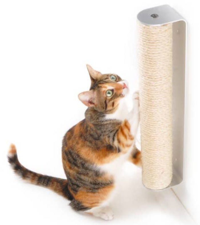 18. Mounted Cat Scratcher
